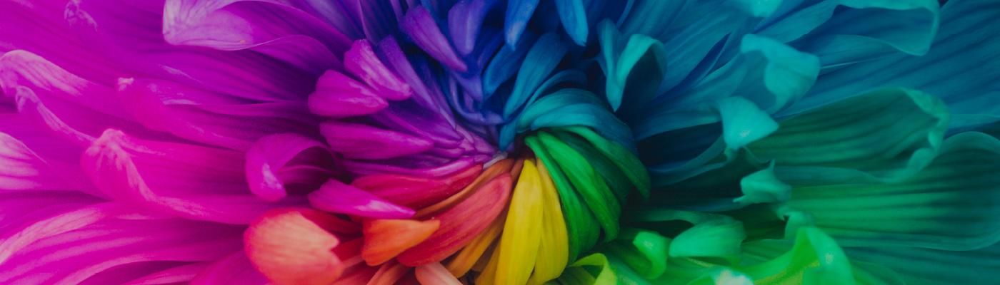 Farbtonubersicht Schoner Wohnen Farbe